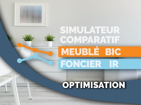 SIMULATEUR FISCAL & FORMATION – IR / BIC