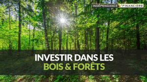 investir bois et forets
